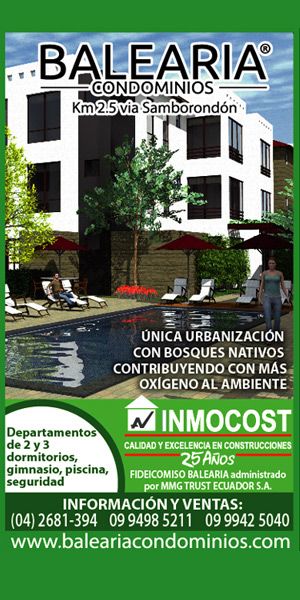Inmoconsa